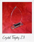 Crystal Trophy 23