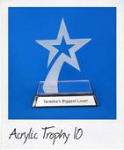 Acrylic jumping star trophy