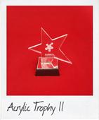 chunky star acrylic trophy