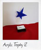 blue star acrylic award