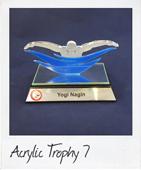 Acrylic swimming trophy