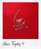 Water drop shaped glass trophy