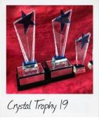 Star Crystal Trophy 19