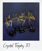 yellow star crystal trophies