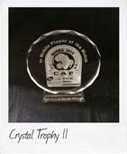 Crystal Trophy 11