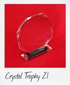 crystal trophy 21