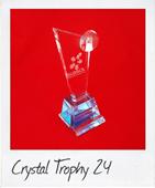 Crystal trophy 24