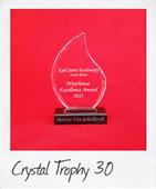 crystal trophy 30