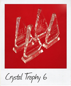 Crystal Trophy 6