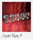 Crystal Globe Trophies