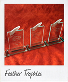 custom feather trophies