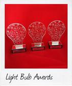 custom trophies the light bulb trophies