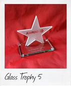 Glass Star Trophy 5