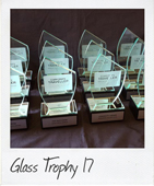 Angled top glass trophy