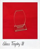 Narrow flat topped glass award