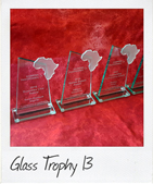 Polished glass awards with glass africa cut-out
